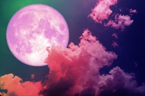 strawberrymoon_001_R